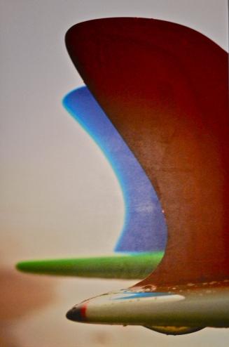 "zatista.com ""Fins"" by Nick Lavecchia"